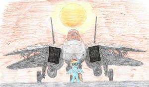 Rainbow Dash and F-14