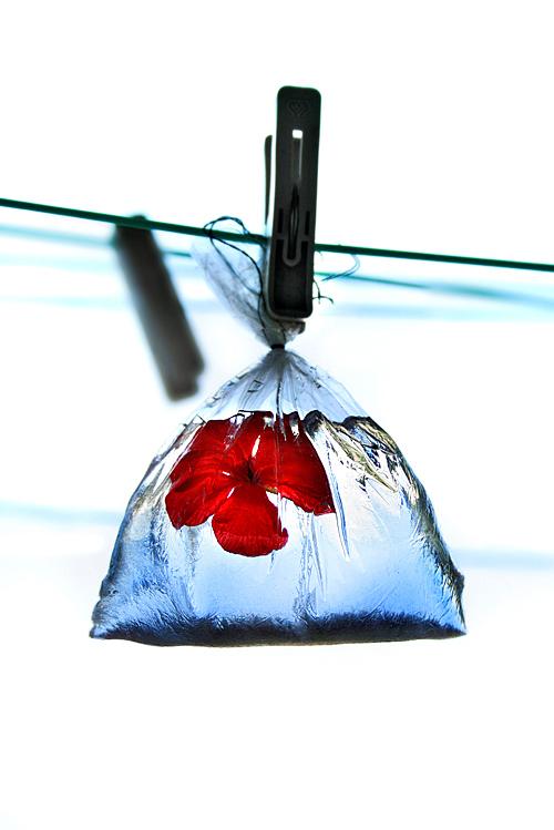 Piece of my heart by Taty-Ana