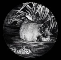 .: Garden Pond II :.