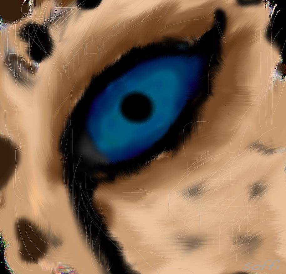 Cheetah Eye by PiePiePiePAY