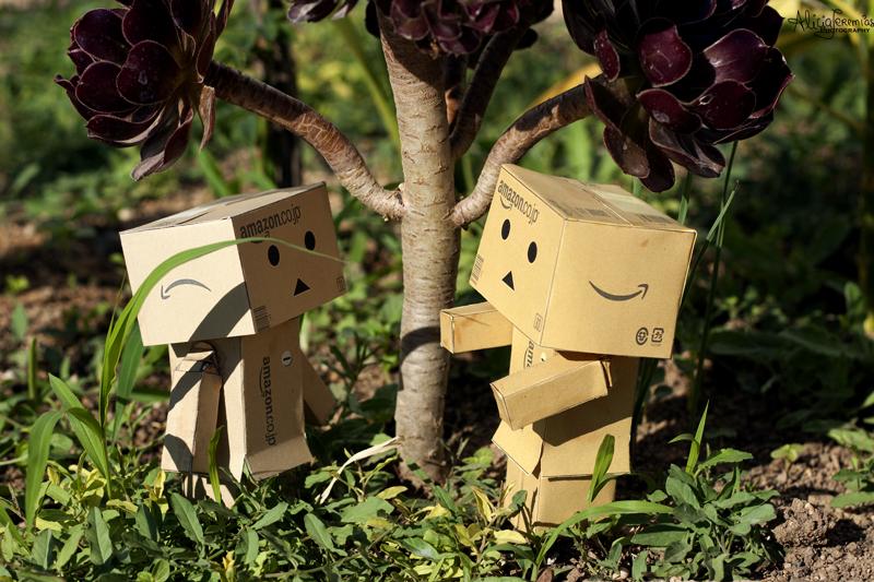 Danbo Hug by AngelAr-Feiniel