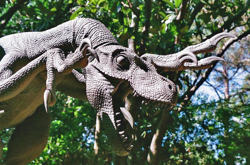 Velociraptor by DragonRiderofRohan