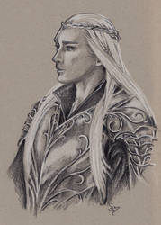 Thranduil Warrior by ShannonValentine