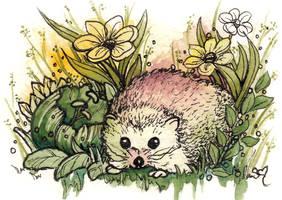 Hedgehog Love by ShannonValentine