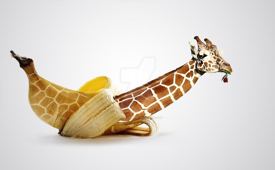 Digitale Giraffengeburt by Bildmalerin