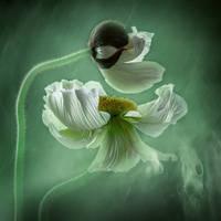 schweben by Bildmalerin