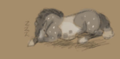 Sleepy Gerin