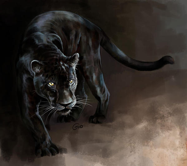Black jaguar animal drawing - photo#1