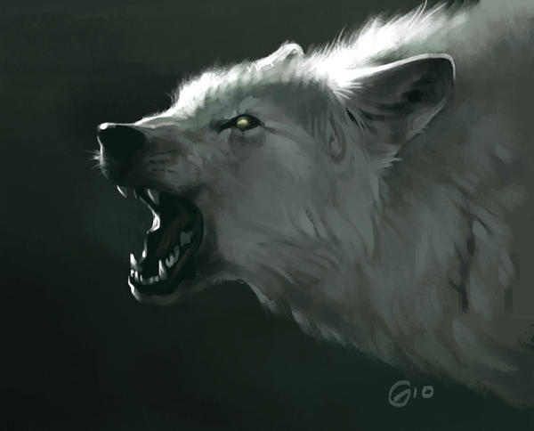 Wolf Speed Painting by giovannag