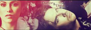 Damon and Elena Banner by Schoggii