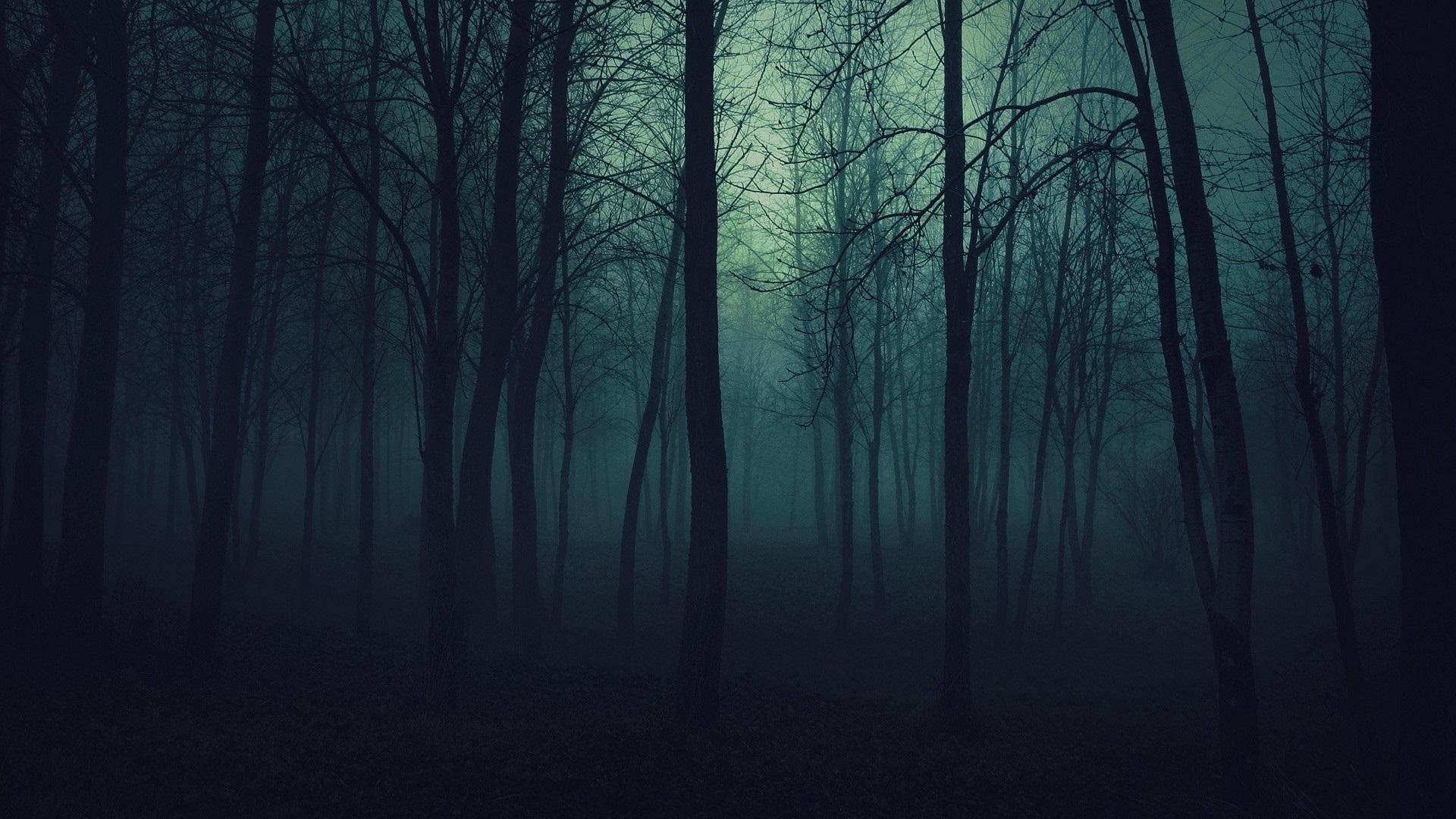 art dark car forest - photo #19