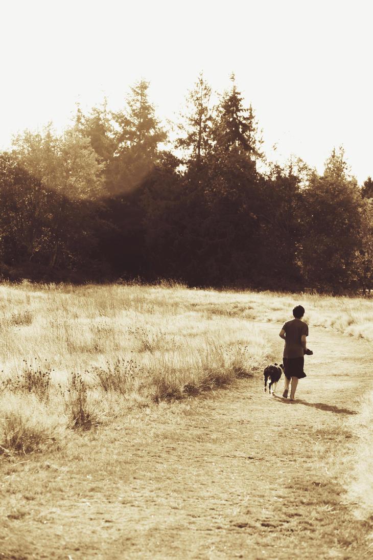 The Last Run by FrancesColt