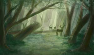Sadnass forest