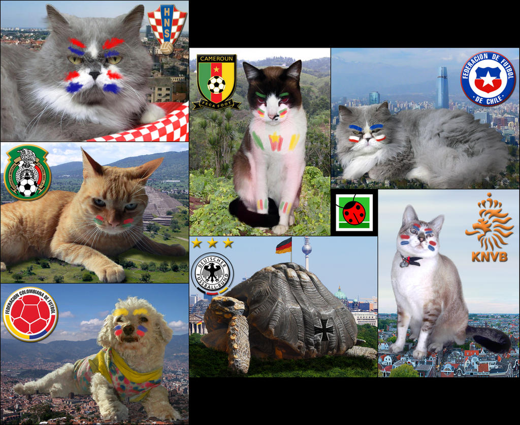 My pets in the world cup :P by mushisan