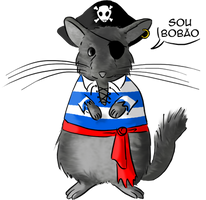Eibl: the broken tail pirate chinchilla.
