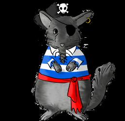 Eibl: the broken tail pirate chinchilla.