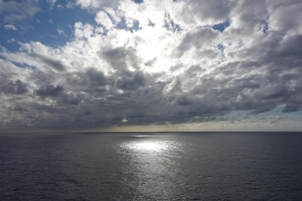 Ocean263