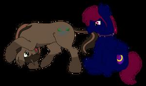 YCH - Fluffy Ponies AHMM! for CloeNightshy by Kalimoo-Art