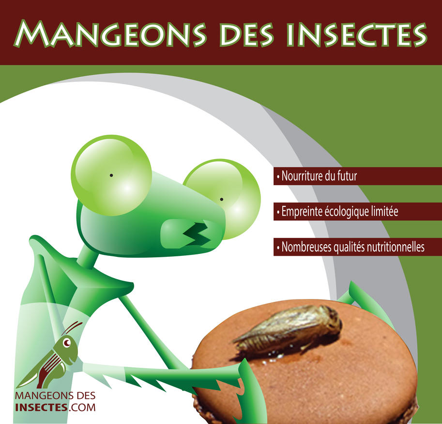 Mangeons des Insectes by Eknut