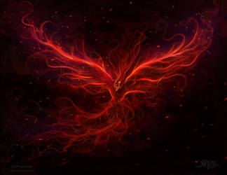 The Phoenix Rise by amorphisss
