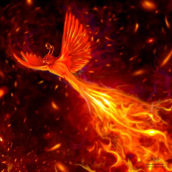 Le Phénix Enchaîné #4 Immortal_flames_by_amorphisss-d43kxqw
