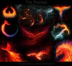 My phoenix collection