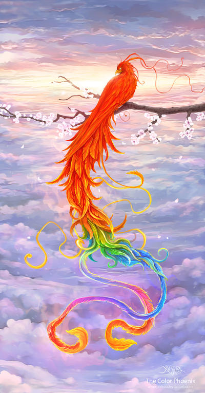 The Color Phoenix by amorphisss