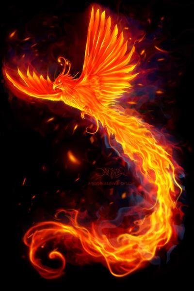 Immortal flames t shirt edit by amorphisss on deviantart - Photo de phenix ...
