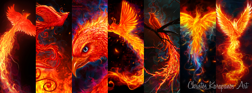 phoenixes by amorphisss on deviantart