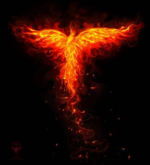 Phoenix orange flames ver