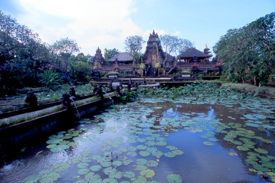 Temple pond (Bali, Indonesia) by drewhoshkiw