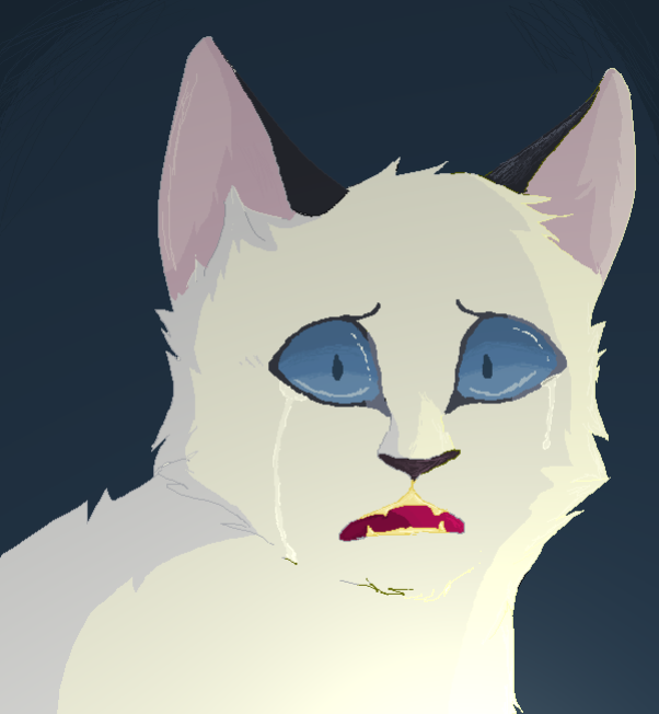 Warriors Cats Into The Wild Summary: :: No Snowfur! :: By Glacierpaws On DeviantArt
