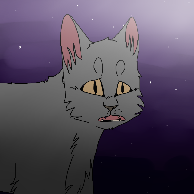 Safe And Sound Warrior Cats Map
