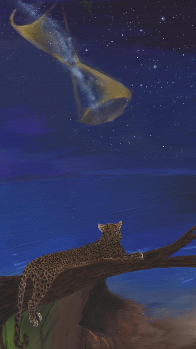 Stargazing by Sparia