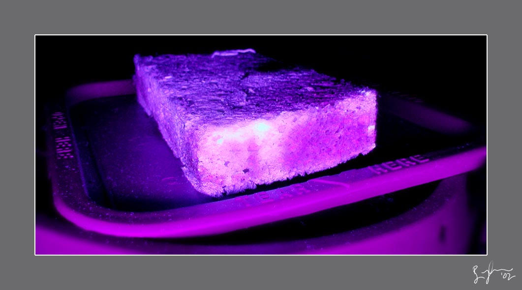 black light sponge by kuso