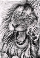 Lion Drawing by shadathchy