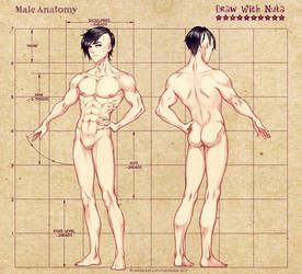 Male Figure Reference by Nukababe