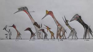 Azhdarchidae parade: titans of the sky