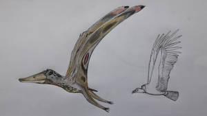 Ornithodiran Aerial scavengers by paleosir