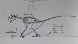 Dragon skeletal by paleosir