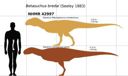Betasuchus bredai by paleosir