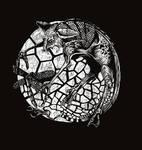 DragonFly Wood Block Print
