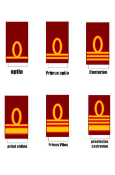 Roman army officer ranks