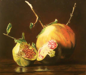 Pomegranate by ruba11