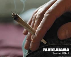 Marijuana by Draekken