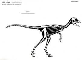 Mei long skeletal by Trodonto