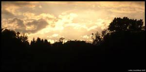 My windows view