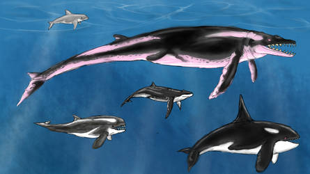 Archaeocetes and Paleowhales