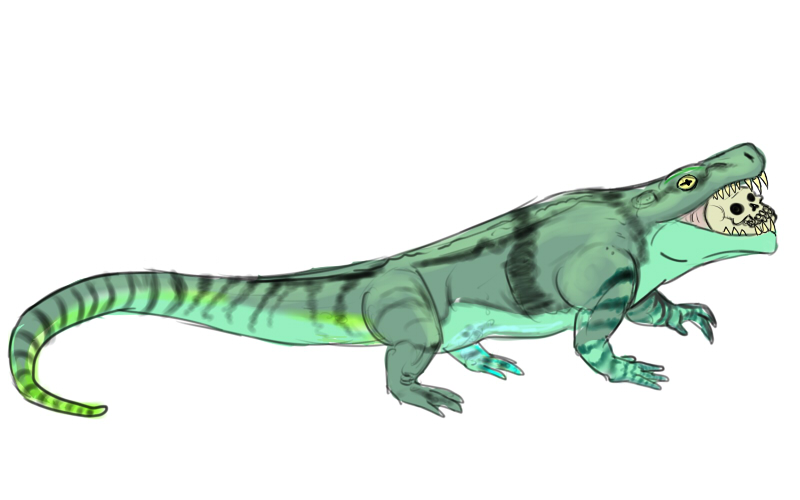 Limnoscelis by Enneigard