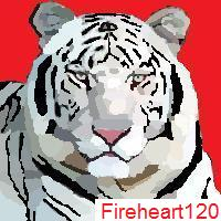 white bengal tiger by fireheart120
